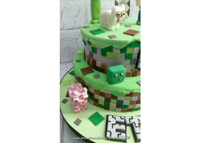 Minecraft Cake with Matching